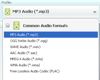 Any Audio Converter Profile